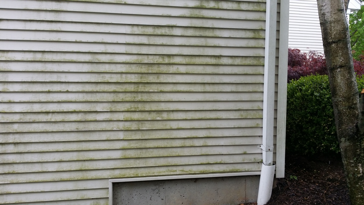Pressure Washing Vinyl Siding Problems Cleaning Specialists