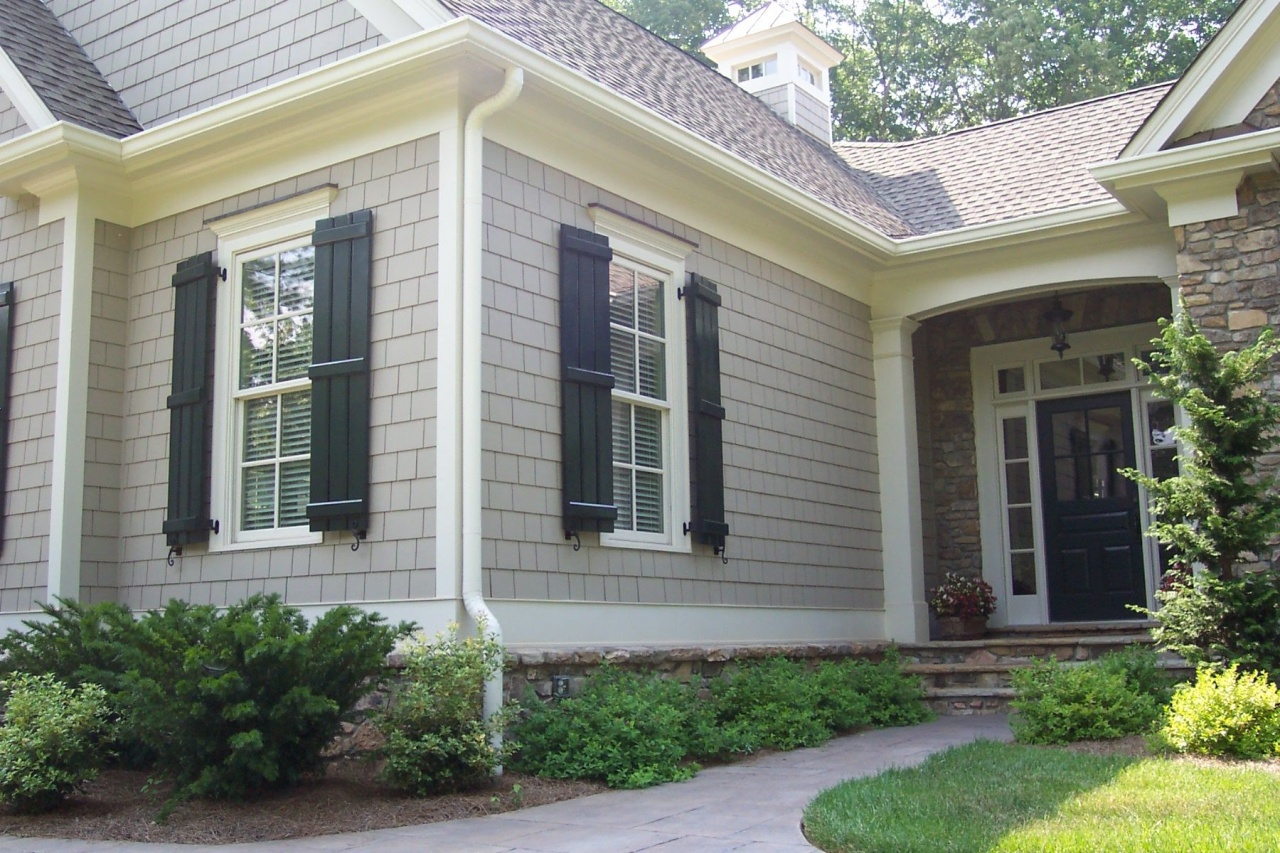 Vinyl Siding Ideas For Small Homes New Home Color Scheme In 2019